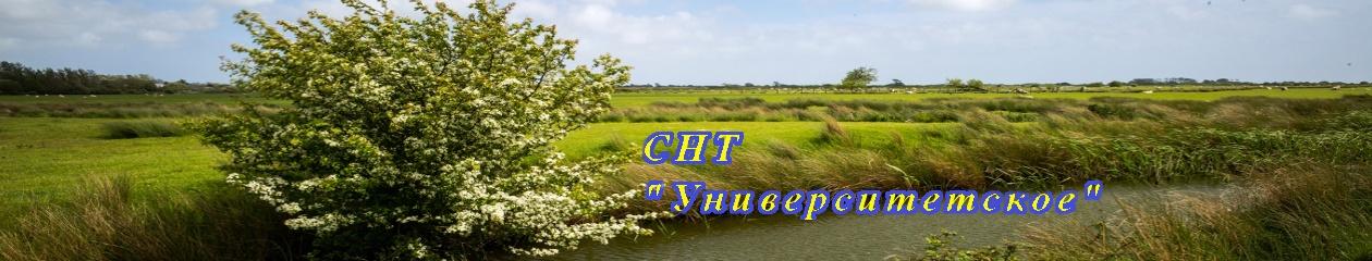"""СНТ """"Университетское"""""""