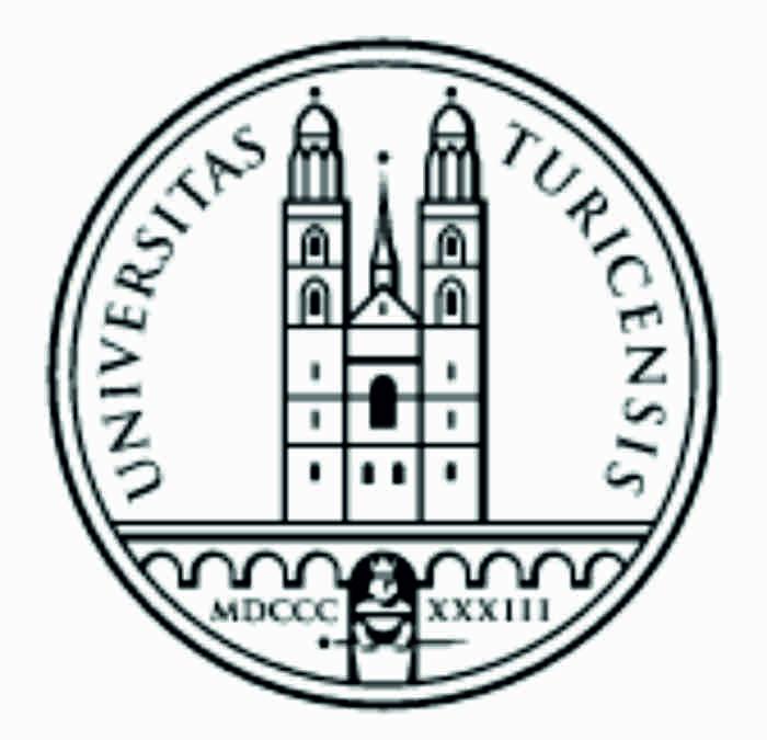 Цюрихский университет (Швейцария)
